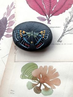 Black Butterfly Stone - love! would love to try make this. :)
