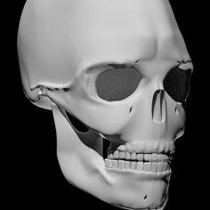 Bones 3D (Anatomy). App en la que se muestran los huesos del cuerpo humano en difrentes colores. Cada hueso tiene información propia. Muy aconsejable.