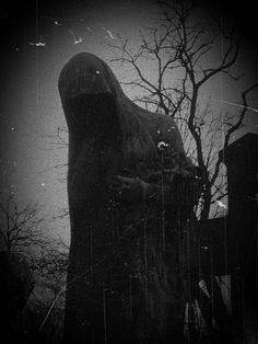 dark Dreams | Visit n-ephthys.tumblr.com
