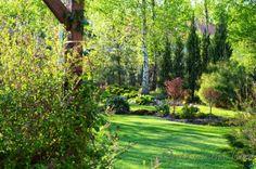 Popołudnia w ogrodzie