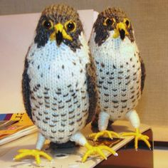 peregrine falcon knitted bird miniature peregrine by loonville