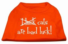 Mirage Pet Products Black Cats Are Bad Luck Screen Print Shirt, Small, Orange -- Learn more by visiting the image link. (This is an affiliate link and I receive a commission for the sales)