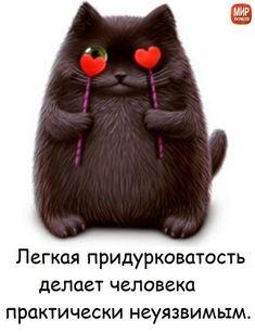 Письмо «Привет, ольга! Не пропустите новые Пины...» — Pinterest — Яндекс.Почта
