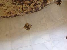 Current Floor Magnolia, Tile Floor, Flooring, Texture, Bathroom, Crafts, Surface Finish, Washroom, Manualidades