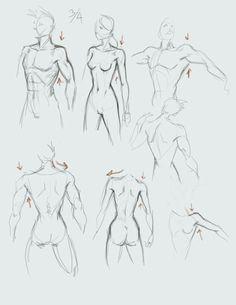 how to draw, painting, comics,anime, manga, monkey, woman,king, human, man, woman, male, female, body, torso, tutorial, girl.