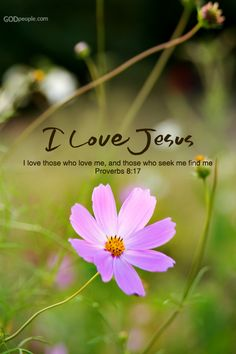 """""""I love them that love me; and those that seek me early shall find me.""""  Proverbs 8:17"""