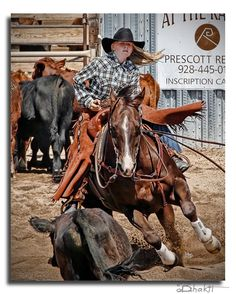 #cowgirl #cutting #horse  http://runevapor.com