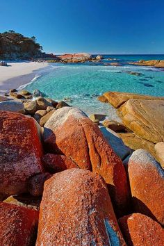 Bay of Fires Tasmania Australia Visit Australia, Australia Travel, Queensland Australia, Western Australia, Thing 1, Solo Travel, Beautiful Beaches, Beautiful Landscapes, Wonders Of The World