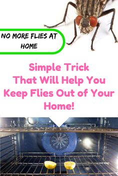 Simple Trick That Will Help You Keep Flies Out of Your Home!