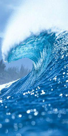 ~ WAVE ~