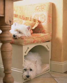 A built in bench and a hidden doggie bed! How awesome is that add a compartment for storage and top lid for easy access and cleaning!