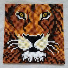 Lion hama perler beads by nicolema85 - Pattern: https://www.pinterest.com/pin/374291419003177085/
