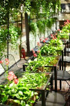 Aoyama Flower Market Tea House↞❁✦彡●⊱❊⊰✦❁ ڿڰۣ❁ ℓα-ℓα-ℓα вσηηє νιє ♡༺✿༻♡·✳︎· ❀‿ ❀ ·✳︎· FR July 22, 2016 ✨вℓυє мσση✤ॐ ✧⚜✧ ❦♥⭐♢∘❃♦♡❊ нανє α ηι¢є ∂αу ❊ღ༺✿༻♡♥♫ ~*~ ♪ ♥✫❁✦⊱❊⊰●彡✦❁↠ ஜℓvஜ