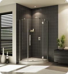 Fleurco PXNA Platinum Neo Angle Single Shower Door with Glass to Glass Hinges…