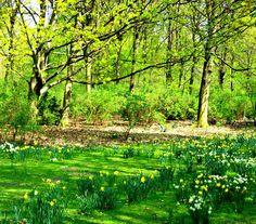 Easter in Tiergarten  inspired by nature you'll find at www.gardenofenlgand-jewellery.com Berlin