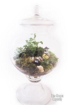 It was once said that only children have the ability to see the forest guardian. How true is it, no one knows. Totoro, the forest guardian terrarium is designed for customers who love Hayao Miyazaki's tales like we love them. Share your Kitty Bus adventures with us. Size of Glass bottle is Medium, 34cm high, 10cm diameter