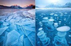 frozen-ice-art21.jpg (700×455)