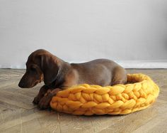 Chunky Knit Pet Beds by Anna Mo - Design Milk Dachshund Funny, Dapple Dachshund, Dog Milk, Warm Bed, Crochet Wool, Pet Beds, Dog Accessories, Dog Treats, Textiles
