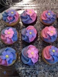 Butternut Cupcakes Specialty Cupcakes -