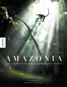 Amazonia: Tiere und Pflanzen im größten Landschaftsgebiet der Welt: Amazon.de: Thierry Piantanida: Bücher