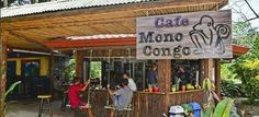 Cafe Mono Congo - coffee shop in Dominical Costa rica