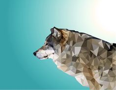 Wolf. Low Poly.