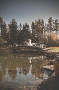 Bride and groom on a bridge over a lake | Shalene is an Edmonton based photographer who specializes in wedding photography. Her photos are simple and elegant with a vintage style feeling.