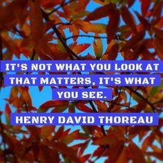 "#AffiliateMarketing ""It's not what you look at...""  Henry David Thoreau #quote#inspiration http://pic.twitter.com/UNjNhvyxEl RT lindafreeman_  T   Affiliate Marketing (@Affiliate_M_k_t) August 30 2016"