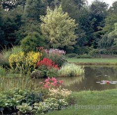 Foggy Bottom Lake at Bressingham Gardens Temple Bells, Lake Garden, Garden Pictures, This Is Us, Garden Design, The Outsiders, English Gardens, Planting, Closer