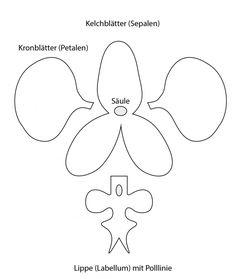 Anleitung für ´infache ungedrahtete Orchidee aus Blütenpaste