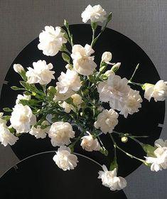 Showroom Finland (@showroomfinland) • Instagram-kuvat ja -videot Nordic Lights, Finland, Flower Power, Showroom, Floral Wreath, Tables, Wreaths, Table Decorations, Flowers