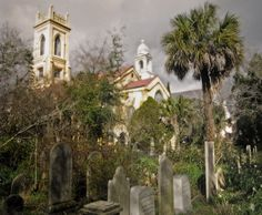 Google Image Result for http://www.forestandfin.com/wp-content/gallery/charleston-tour-pics/cemeterytower4.jpg