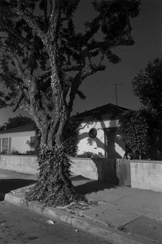 Henry Wessel No. 26, 1995 - 1998 From the series Night Walk gelatin silver print 14 x 11 inch Courtesy of Galerie Thomas Zander
