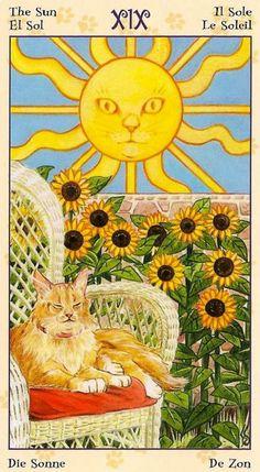 XIX - Le soleil - Tarot de chats païens