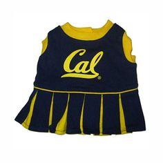 California Golden Bears Cheerleader Dog Dress