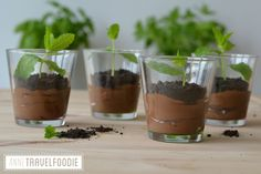 vegan oreo chocolate mousse. I had a lot of fun making my dessert today. I made a healthy and vegan chocolate mousse and created a mini garden! I used oreo cookies to create the soil and mint as a plant. This dessert is not only fun to serve to your guests, it's healthy and nutritious as well!