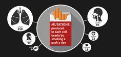 最新の研究によって、喫煙によって起きるDNA変異の数が判明2