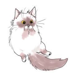 a cute cat drawing Gatos Ragdoll, Illustration Manga, Cat Illustrations, Image Chat, Kawaii Cat, Fluffy Cat, Animal Drawings, Drawings Of Cats, Crazy Cats