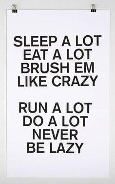 Sleep a lot  eat a lot  brush em  like crazy    run a lot