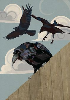"""Crows Ravens:  """"#Crow Invasion,"""" by Carl Conway."""