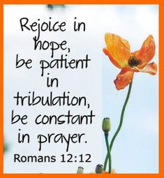 Uplifting and inspiring prayer, scripture, poems & more! Discover prayers by topics, find daily prayers for meditation or submit your online prayer request. Gospel Quotes, Lds Quotes, Biblical Quotes, Prayer Quotes, Religious Quotes, Faith Quotes, Spiritual Quotes, Bible Verses Kjv, Prayer Scriptures