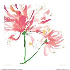 Pink Honeysuckle Rileys Birth Flower  Tattoo Ideas Pinterest