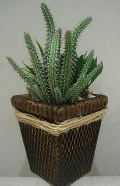 Cactus e suculentas IiI | Rosamorena Artes Florais | Elo7