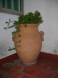 Tinajas para jardin google search jardines y fuentes for Decoracion de jardin con ollas de barro