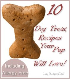 10 Homemade Dog Treat Recipes - Including 6 Allergy Free Recipes