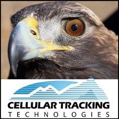 CTT (@CellTrackTech)