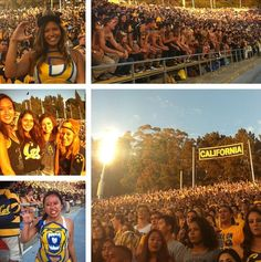 Cal bears student section on game night! #CalFootball #CalStudentSection