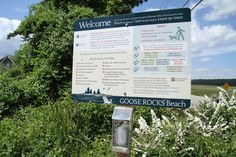 One of the dog-friendliest beaches around (Kennebunk Goose Rocks Beach)