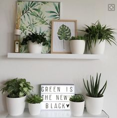 Alphabet Lifestyle Interior design green room decorating ideas - see more