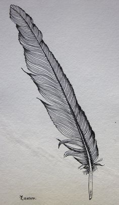 Black Feather 2 -- original ink drawing. $15.00, via Etsy.